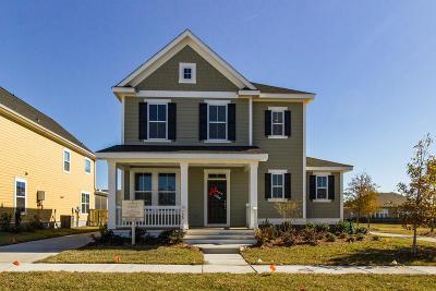 Summerville Single Family Home For Sale: 304 Garrison Street