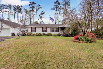 Summerville Single Family Home For Sale: 238 Renau Boulevard