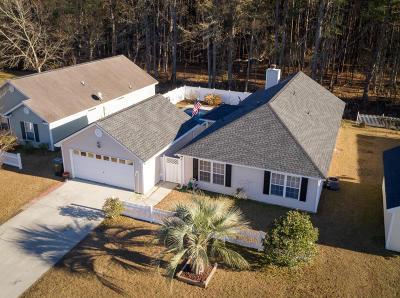 Summerville Single Family Home For Sale: 176 Jupiter Lane