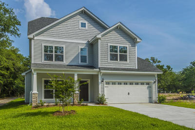 Johns Island Single Family Home For Sale: 3344 Dunwick Drive