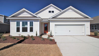 Moncks Corner Single Family Home For Sale: 232 Seaworthy Avenue