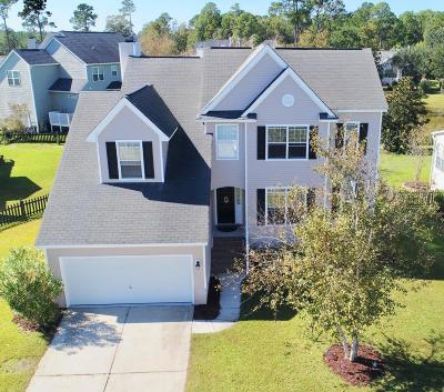 Mount Pleasant, Isle Of Palms, Daniel Island, Awendaw Single Family Home For Sale: 1820 Palmetto Isle Drive