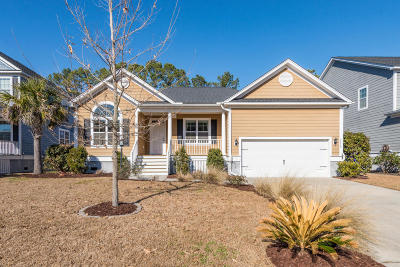 Charleston Single Family Home For Sale: 2210 Terrabrook Lane