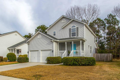 Johns Island Single Family Home For Sale: 3074 Penny Lane