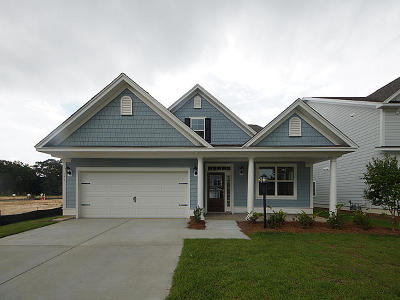 Moncks Corner Single Family Home For Sale: 538 Pendleton Drive