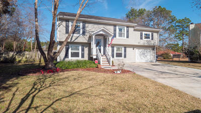 Summerville Single Family Home For Sale: 103 James Court