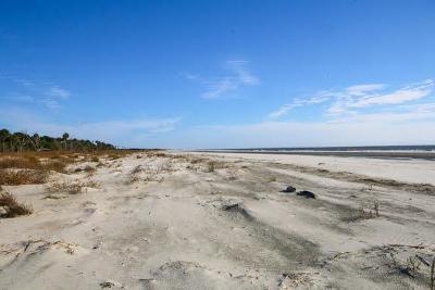 Dewees Island Residential Lots & Land For Sale: 291 Pelican Flight Drive #Lot 15