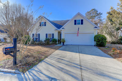 Mount Pleasant, Isle Of Palms, Daniel Island, Awendaw Single Family Home For Sale: 2704 Palmetto Hall Boulevard