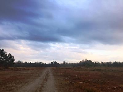 Residential Lots & Land For Sale: 2660 Moses Dingle Road