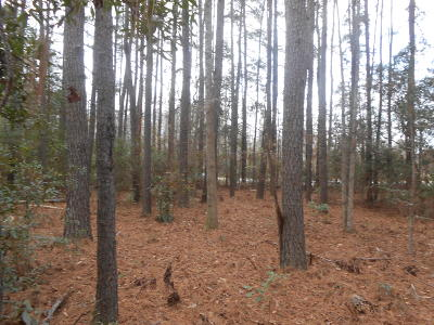 Residential Lots & Land For Sale: Sniders Highway