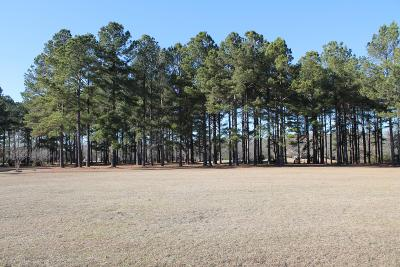 Residential Lots & Land For Sale: 405 Pine Lake Court