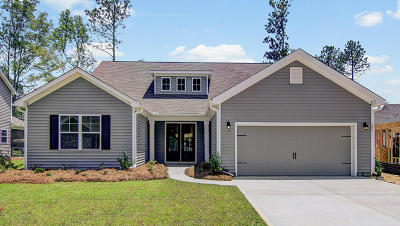 Moncks Corner Single Family Home For Sale: 626 Woolum Drive