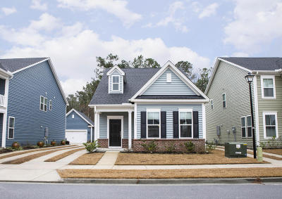 Charleston County Single Family Home For Sale: 3171 Moonlight Drive