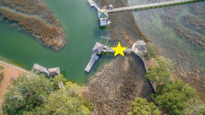 Charleston Single Family Home For Sale: 738 Creeks Edge