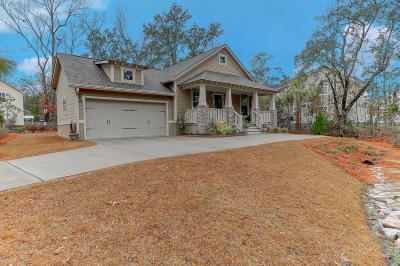 Charleston County Single Family Home Contingent: 647 Beaten Path