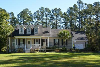Summerville Single Family Home Contingent: 233 Yearling Drive