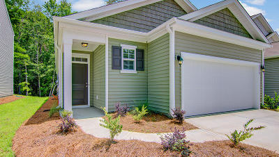 Single Family Home For Sale: 9676 Roseberry Street