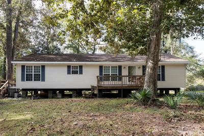 Johns Island Single Family Home For Sale: 1986 Nitsa Street