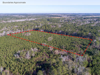 Johns Island Residential Lots & Land For Sale: Hut Rd