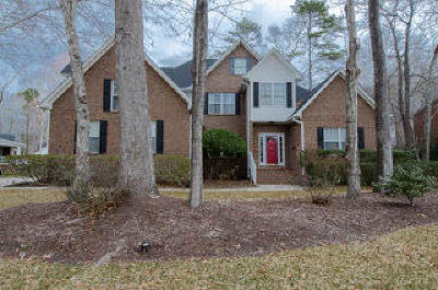 Summerville Single Family Home For Sale: 259 Brandywine Drive