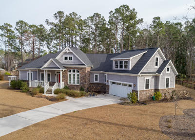 Summerville Single Family Home For Sale: 1005 Mt Whitney Drive