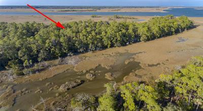 Kiawah Island Residential Lots & Land For Sale: 78 Blue Heron Pond Road