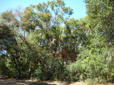 Seabrook Island Residential Lots & Land For Sale: 3308 The Lookout