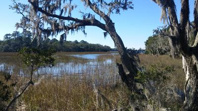 Johns Island Residential Lots & Land For Sale: 6038 Admiral Blake Lane