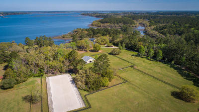 Wadmalaw Island Single Family Home For Sale: 6080 Josie Ridge Road