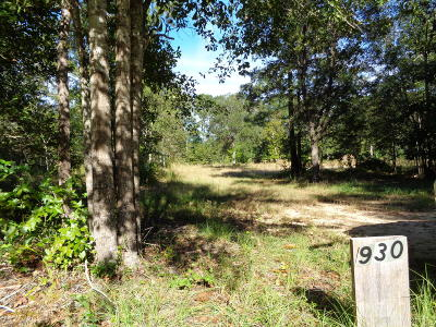 Awendaw Residential Lots & Land For Sale: 930 Awendaw Lakes Boulevard