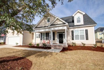 Charleston Single Family Home For Sale: 1002 Jervey Point Road