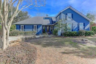 Mount Pleasant Single Family Home For Sale: 801 Detyens Road