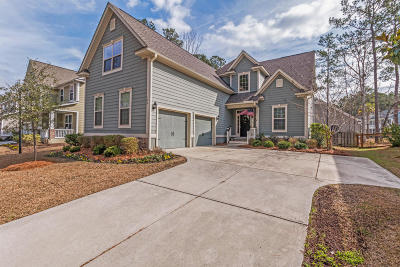 Summerville Single Family Home For Sale: 172 Donning Drive