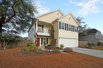 Johns Island Single Family Home For Sale: 2032 Chilhowee Drive