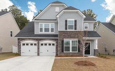 Moncks Corner Single Family Home For Sale: 182 Blackwater Way