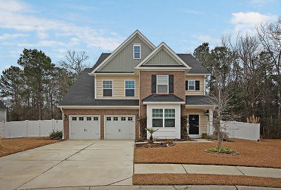 Moncks Corner Single Family Home For Sale: 223 Buttonbush Court