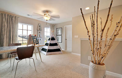 Single Family Home For Sale: 263 Swamp Creek Lane