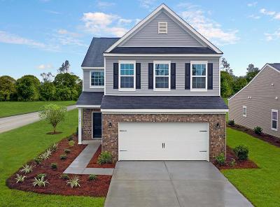 Single Family Home For Sale: 159 Guinness Lane