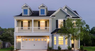 Single Family Home For Sale: 260 Swamp Creek Lane
