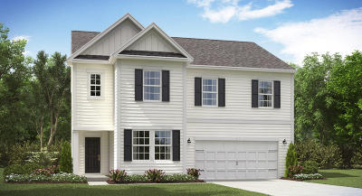 Single Family Home For Sale: 261 Swamp Creek Lane