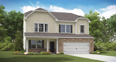 Single Family Home For Sale: 259 Swamp Creek Lane