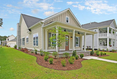 Ravenel Single Family Home For Sale: 4008 Capensis Lane #Lot 258