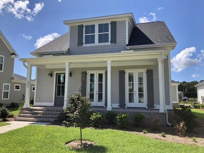 Ravenel Single Family Home For Sale: 4042 Capensis Lane #Lot 140