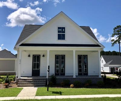 Ravenel Single Family Home For Sale: 4046 Capensis Lane #Lot 141