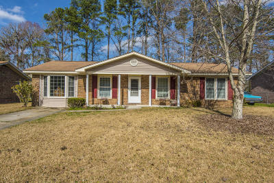 Single Family Home For Sale: 205 Judith Drive