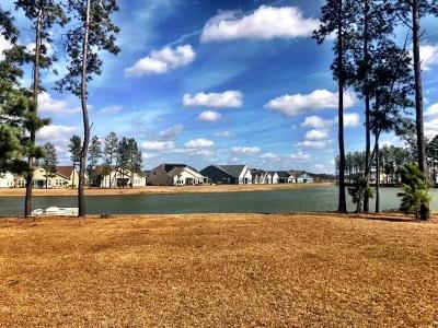 Summerville Single Family Home For Sale: 123 Rowboat Rd