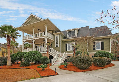 Mount Pleasant Single Family Home For Sale: 1304 King Bird Court