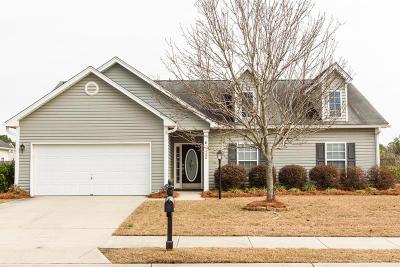 Johns Island Single Family Home For Sale: 1166 Hazymist Lane
