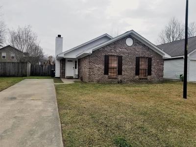 Summerville Single Family Home For Sale: 1105 T J Lane