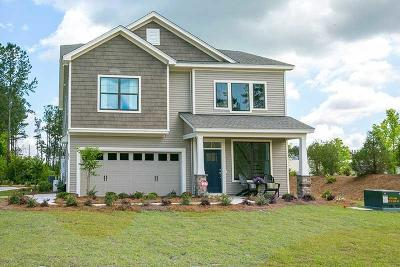 Summerville Single Family Home For Sale: 135 Sago Court